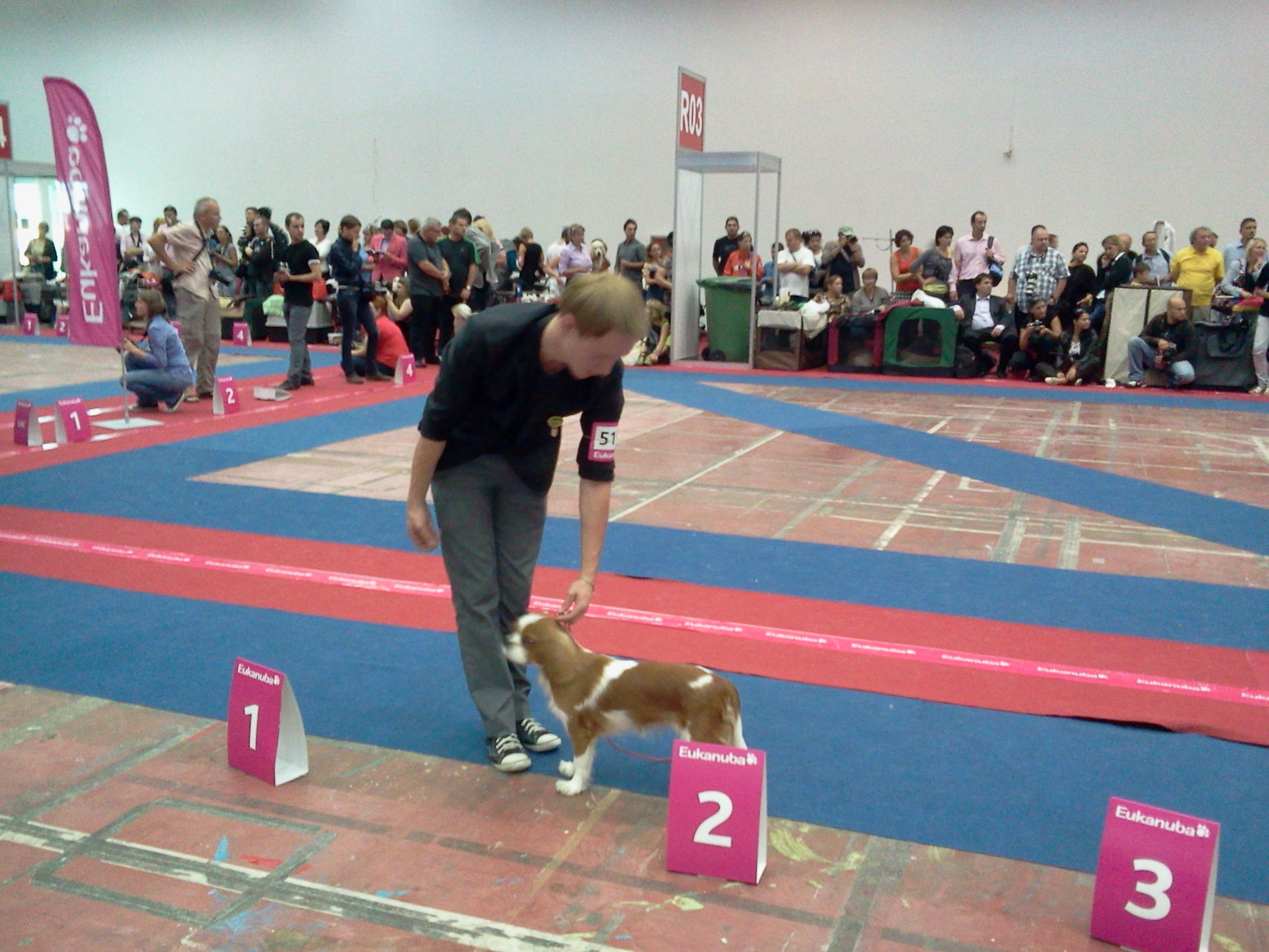 Euro dog Show Bucurest 2012.